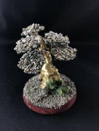 金運と癒し・パワー上昇の樹