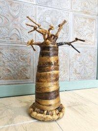 子宝☆生命力の強さで有名な母なる木 バオバブの木☆L 約33センチ