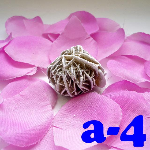 画像2: 断ち切れ!砂漠の薔薇 a-4