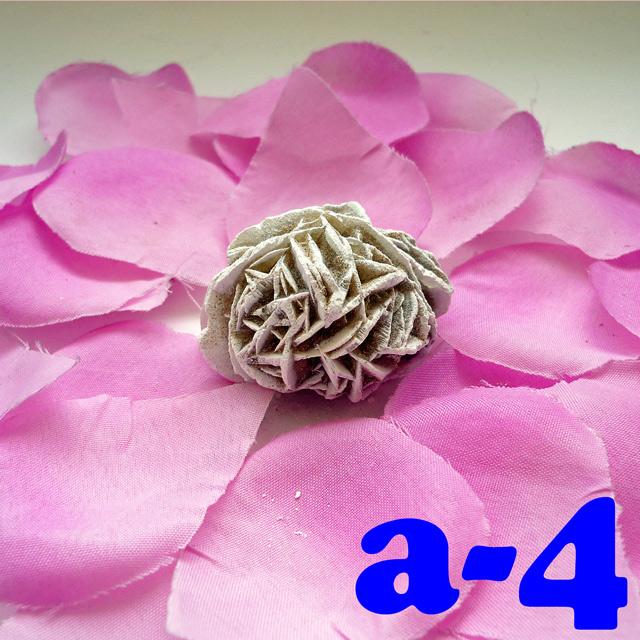 画像1: 断ち切れ!砂漠の薔薇 a-4