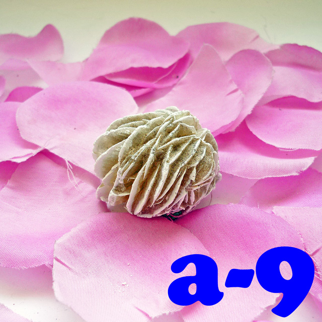 画像1: 断ち切れ!砂漠の薔薇 a-9