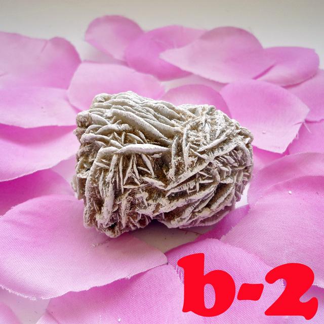 画像1: 断ち切れ!砂漠の薔薇 b-2