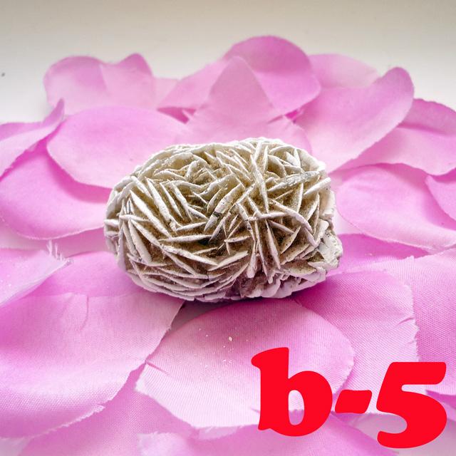 画像1: 断ち切れ!砂漠の薔薇 b-5