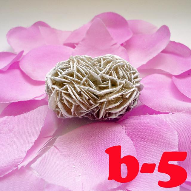 画像2: 断ち切れ!砂漠の薔薇 b-5
