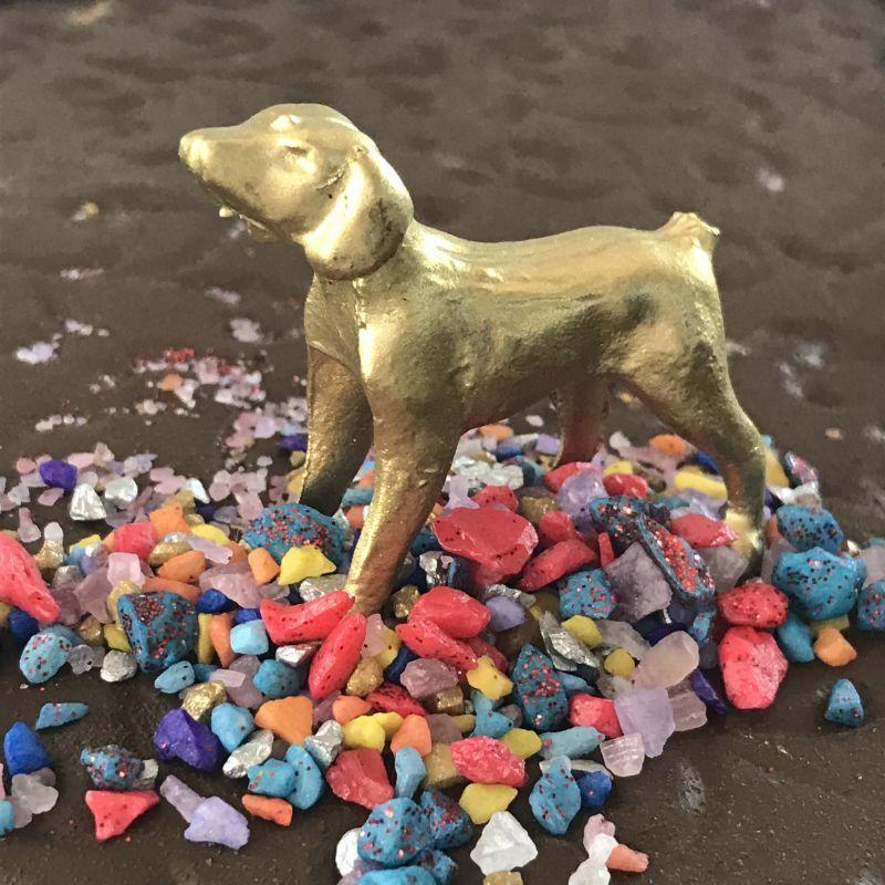 画像1: 願いを叶えてくれる!忠実な犬のお守り🐕