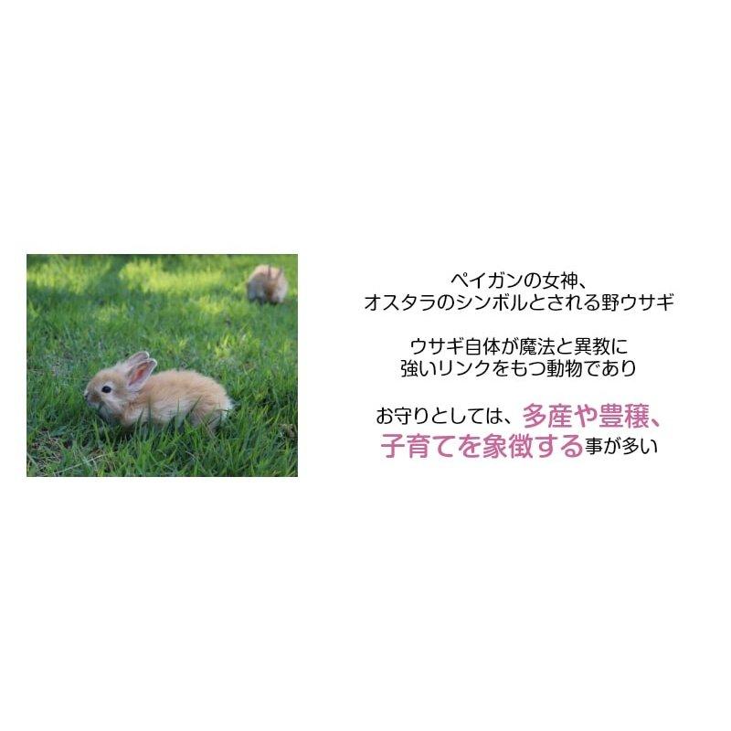 画像2: 多産や子宝のシンボル 幸運・豊穣・愛情をもたらすアミュレット Rabbitmoon